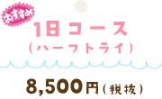 1日コース(ハーフトライ)8,500円(税抜)